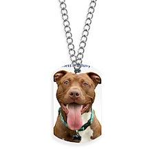 Pit Bull 14 Dog Tags