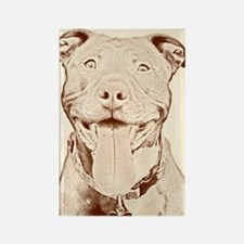 Pit Bull 15 Rectangle Magnet