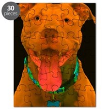 Pit Bull 18 Puzzle