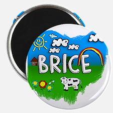 Brice Magnet