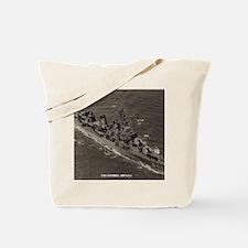 stembel framed panel print Tote Bag