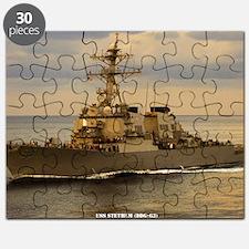 stethem large framed print Puzzle