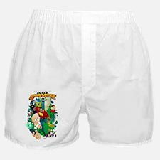 interview_posterSHIRT Boxer Shorts