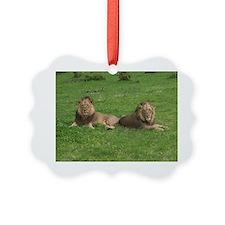 DSC00135 Ornament