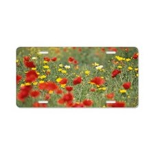 Wild spring flowers, Poppie Aluminum License Plate