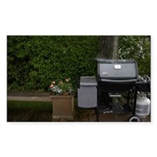 Outdoor barbecue cooker Decal
