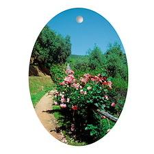Flowers on a railing, Portofino, Ita Oval Ornament