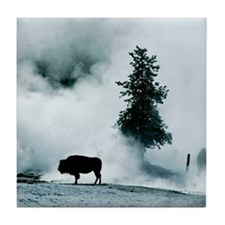 Silhouette of buffalo in winter in Ye Tile Coaster