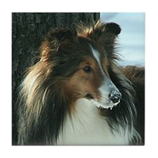 Winter Day Sheltie Tile Coaster