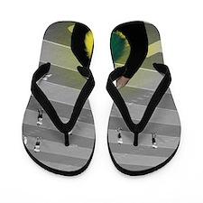 DSC00116 Flip Flops