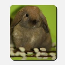bunny_9 Mousepad