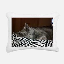 FFF Rectangular Canvas Pillow