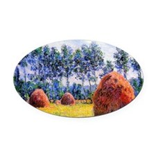296 Oval Car Magnet