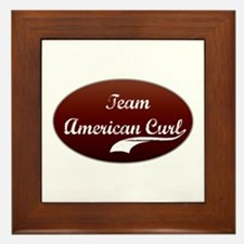 Team Curl Framed Tile