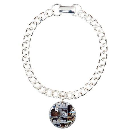 NYNE Saves Charm Bracelet, One Charm
