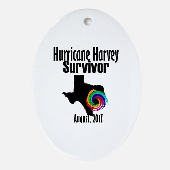 Unique Hurricanes Oval Ornament