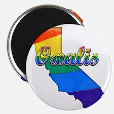 Oxalis Magnet