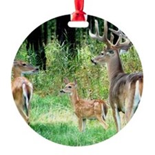Buck With Doe  Fawn Puzzle Ornament
