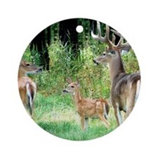 Buck With Doe  Fawn Puzzle Round Ornament
