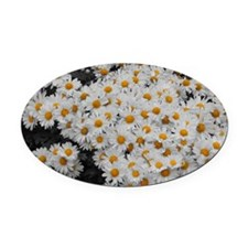 flowers4 Oval Car Magnet