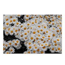 flowers4 Postcards (Package of 8)