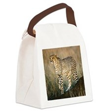 The Hunt Begins Canvas Lunch Bag