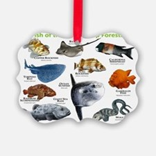 Fish of the Kelp Forests of the P Ornament