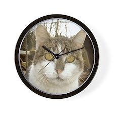 maca7 Wall Clock
