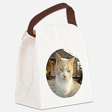 opetkremko6 Canvas Lunch Bag