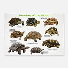 Tortoises of the World 5'x7'Area Rug