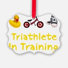 Triathlete_In_Ttraining_wht Ornament