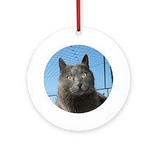 sivi4 Round Ornament