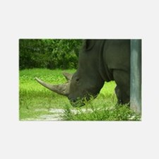 rhino low head Rectangle Magnet
