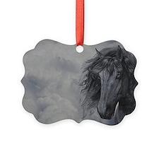 bb_pillow_case Ornament