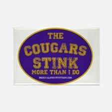 Washington WSU Stinks copy Rectangle Magnet