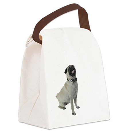 NEW-pugs-not-drugs-WonB Canvas Lunch Bag