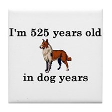 75 birthday dog years collie 2 Tile Coaster