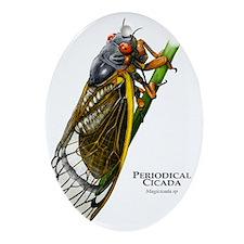 Periodical Cicada Oval Ornament