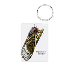 Periodical Cicada Keychains