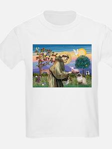 St Francis Himalayan T-Shirt