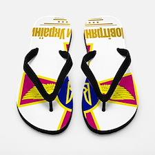 Ukrainian Air Force (Flag 10)2 Flip Flops