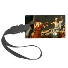 magnet1 Luggage Tag