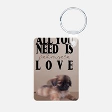 peki_itouch_2_508_H_F Keychains