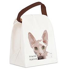 itishashair Canvas Lunch Bag