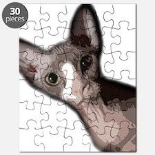 sabrina3 Puzzle