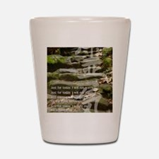 5 STEPS REIKI PRINCIPLES Shot Glass
