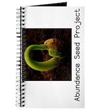 Abundance Seed Keychain1 copy Journal