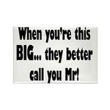 Mr Big Rectangle Magnet