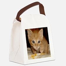 archiIpod Canvas Lunch Bag