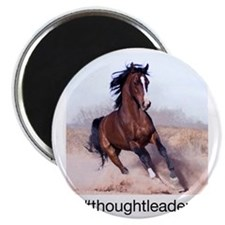 horse_ebooks Magnet